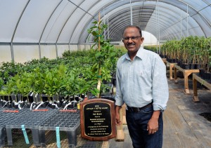 Dr. Mani Skaria has won the 2016 Arthur T. Potts Award for his novel contributions to the Texas citrus industry. Skaria is shown in one of his company's greenhouses. (AgriLife Communications photo by Rod Santa Ana)