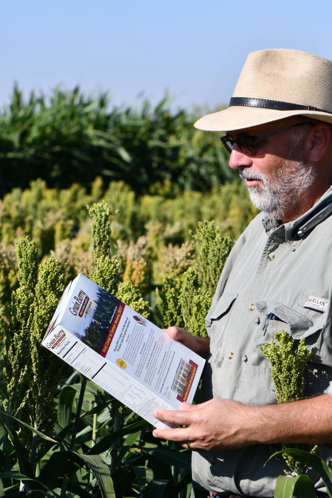 Rooney sees black sorghum, Onyx, hit store shelves